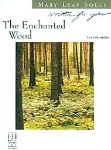 The Enchanted Wood  D2