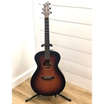 BLUSACONFIRELIG Breedlove USA Concert Fire Light