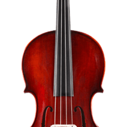 Eastman Step Up Galiano 5 Viola